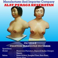 Phantom Breast Care | Bra Model – With Head – Without Head